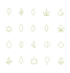 Thin contour icons leaves vector image
