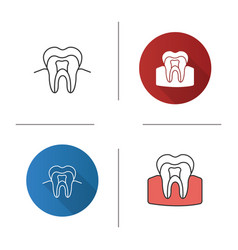tooth anatomical structure icon vector image