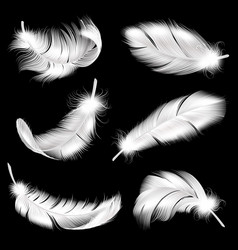 White feathers realistic set falling fluffy vector