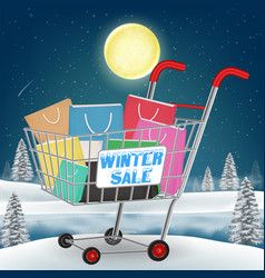 winter sale shopping paper bag on cart vector image