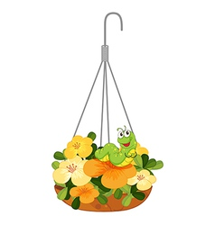 A hanging plant with a caterpillar vector image