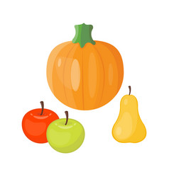 Fresh orange pumpkin seasonal apple pear fruits vector