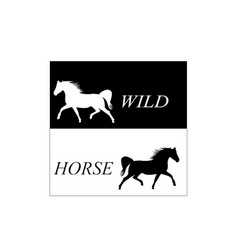white horse runs gallop sketch vector image