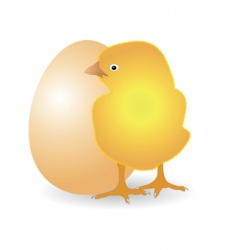 chicken with egg vector image vector image