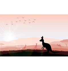 Silhouette a kangaroo the feeding vector image vector image