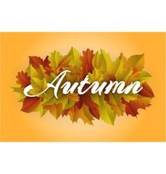 Autumn text vector image