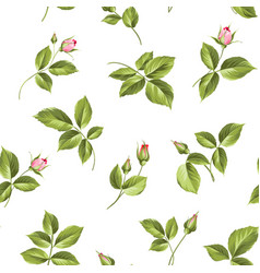 elegant rose seamless pattern vector image