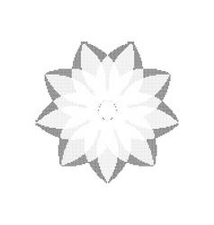 Monochrome circular pattern vector image