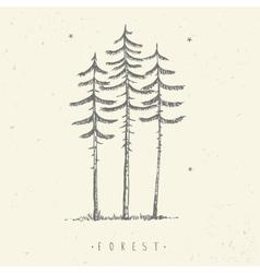Pine minimalism vector