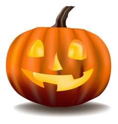 pumpkin halloween vector image