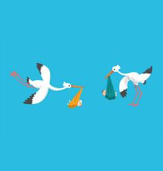 Set storks carrying newborn babies beautiful vector