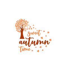 sweet autumn time fall quote design vector image