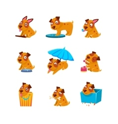 Puppy Everyday Activities Collection vector image
