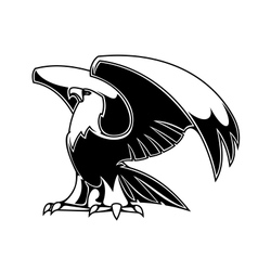 Powerful eagle vector image vector image
