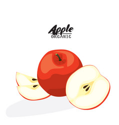 cartoon apple ripe red fruit vegetarian vector image