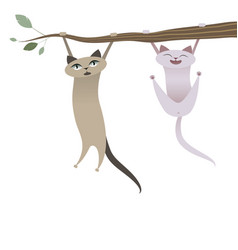 funny cats hanging from tree branch vector image