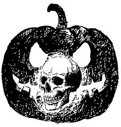 Skull pumpklin vector