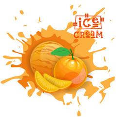 ice cream orange ball fruit dessert choose your vector image vector image
