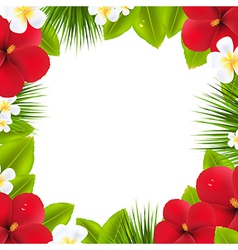 Green Border With Tropical Elements vector image