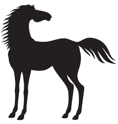 horse stand vector image vector image