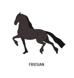 Friesian horse flat purebred vector