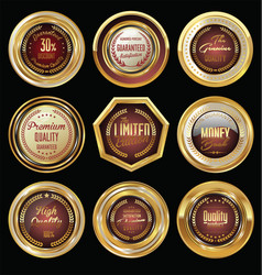 golden badge collection premium quality vector image