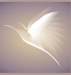 hummingbird white lines2 vector image