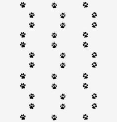 prints dog paws vector image