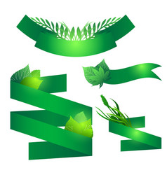 set of green ribbons with leaves element for your vector image