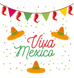 Viva mexico poster colored hats and pennant vector