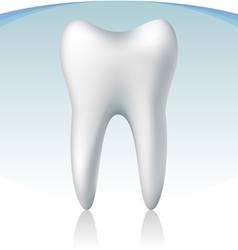 3d tooth vector image vector image