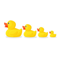 Adorable rubber ducks in row from big to small vector