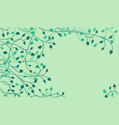 decorative dark green ivy leaves and sprout vector image