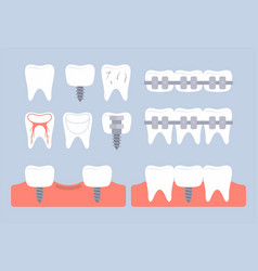 dental tooth icons vector image
