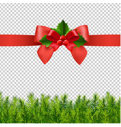 red ribbon with holly berry and firtree vector image
