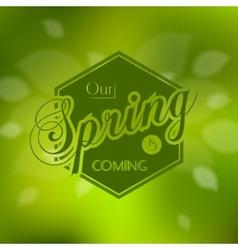 Stylish Spring seasonal card design vector image