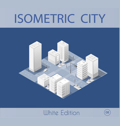 the isometric city with skyscraper vector image