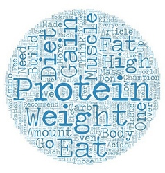 Why You Don t Need Protein To Gain Muscle text vector image