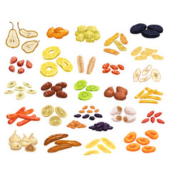 Dried fruits and candied berries icons set vector