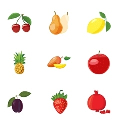 Farm fruits icons set cartoon style vector image