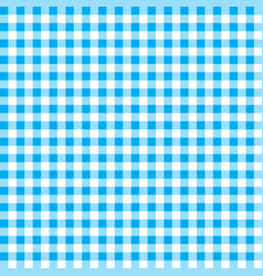 firebrick gingham pattern textured blue and white vector image