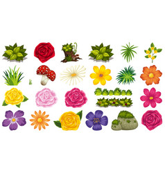 set isolated objects theme - flowers vector image