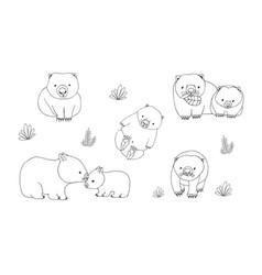 set of cute young wombat in various poses vector image