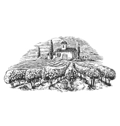 Rural landscape with villa vineyard fields and vector