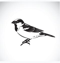 sparrow design on white background bird icon vector image