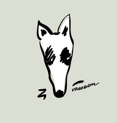 beautiful hand drawn cartoon style raccoon head vector image