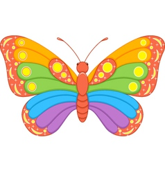 Butterfly Rainbow vector