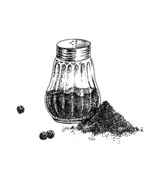 Hand drawn black pepper shaker and heap ground vector