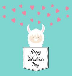 Happy valentines day alpaca llama face sitting vector