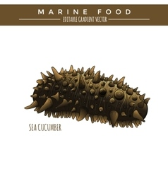 Sea cucumber marine food vector